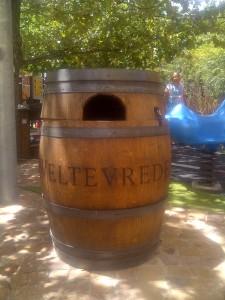 Weltevreden Estate Kids Carnival area