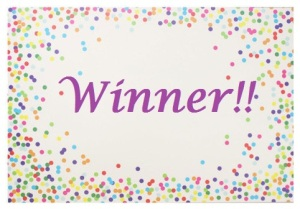 WInner contemporary-placemats1