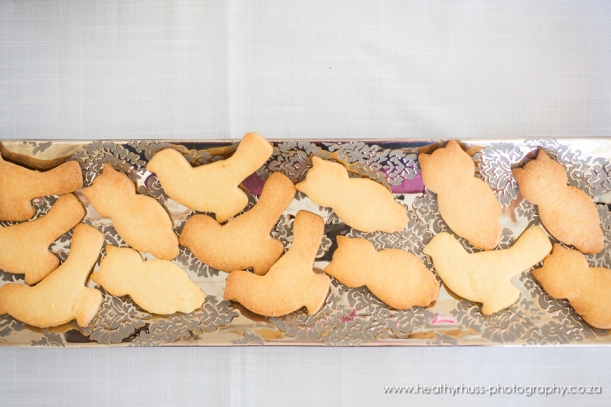 owl shape cookie Parker-Grace birthday 2014_sml-9